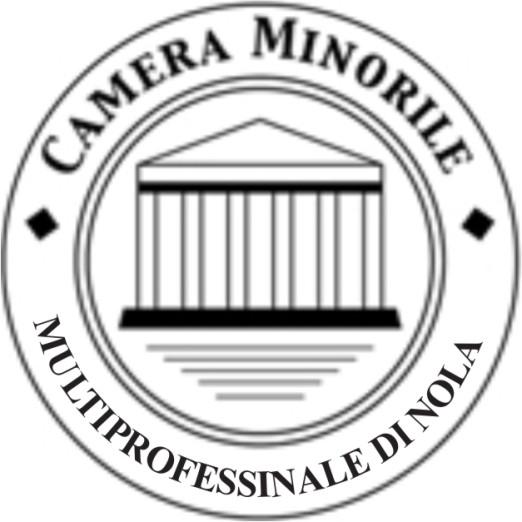 logo camera minorile multiprofessionale di Nola