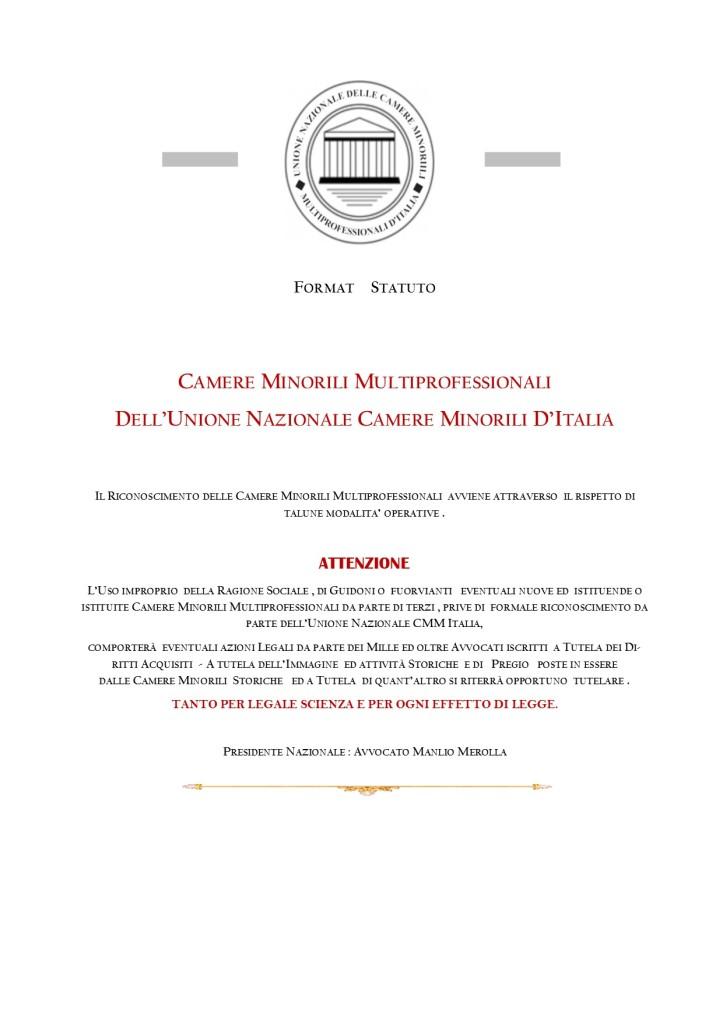FORMAT STATUTO CAMERE MINORILI  MULTIPROFESSIONALI ITALIA